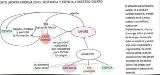 EL ALIMENTO QUE APORTA ENERGIA Y SUSTANCIA