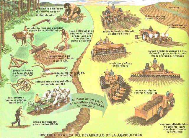 AGRICULTURA- HISTORIA
